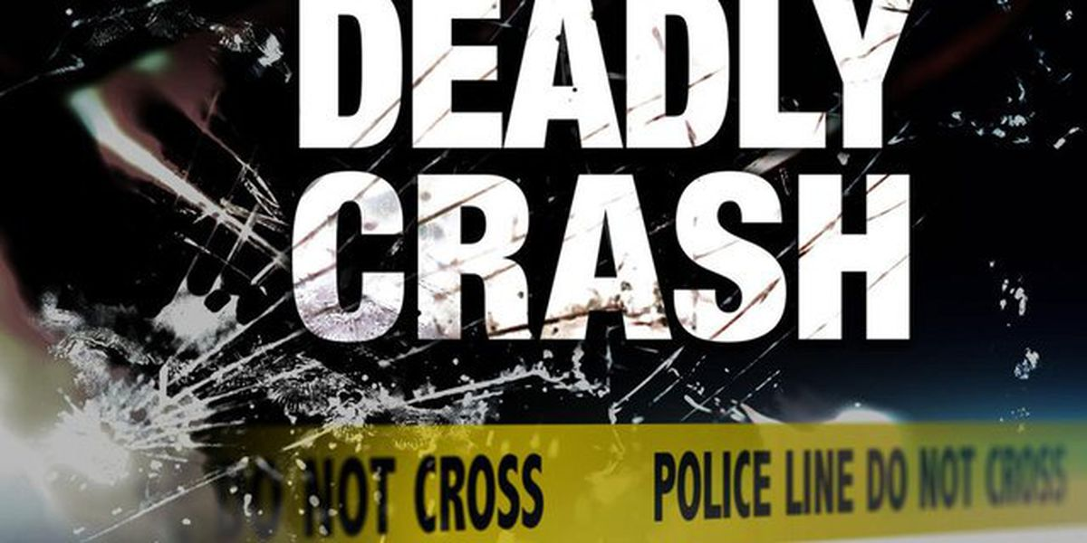 MPD: Person ejected from vehicle during deadly crash on Shelby Drive