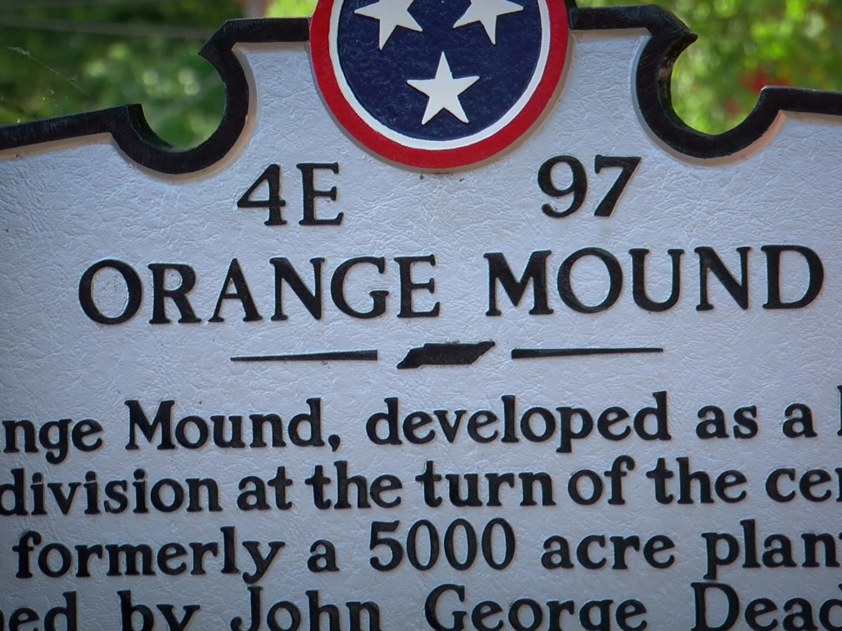 Commission hopes task force can look into decreasing Orange Mound property values
