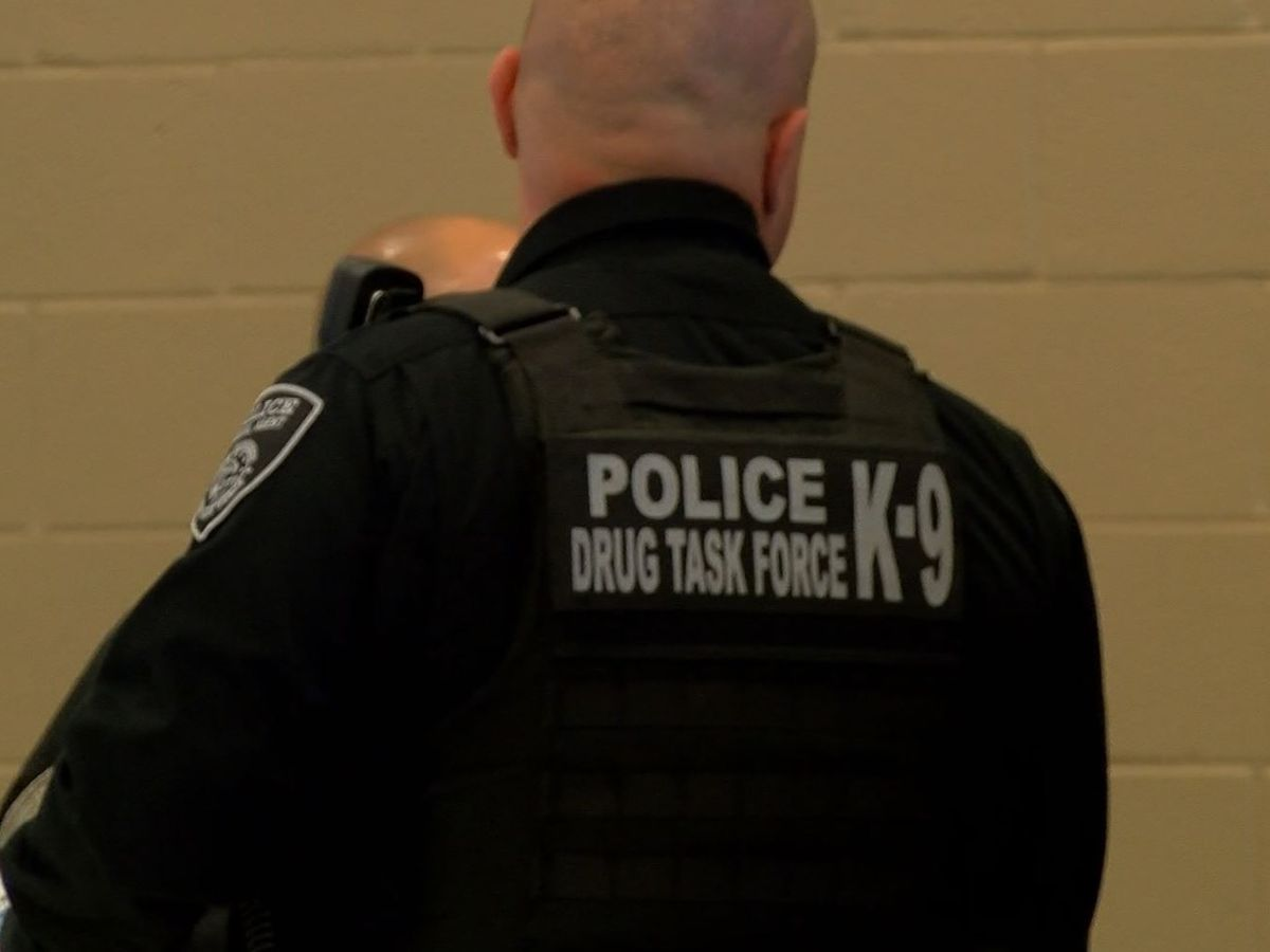 West Tennessee Drug Task Force team named 2020 Team of the Year