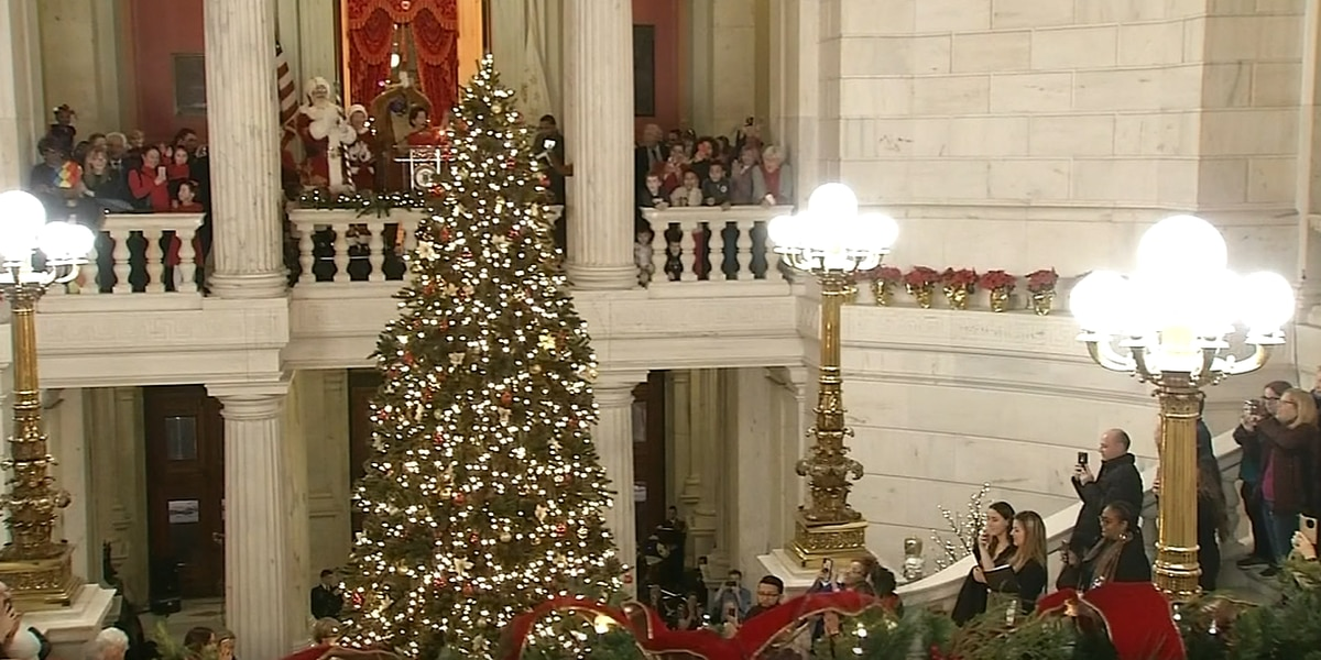 'I was insulted': Fake Christmas tree at R.I. Capitol offends tree farmer