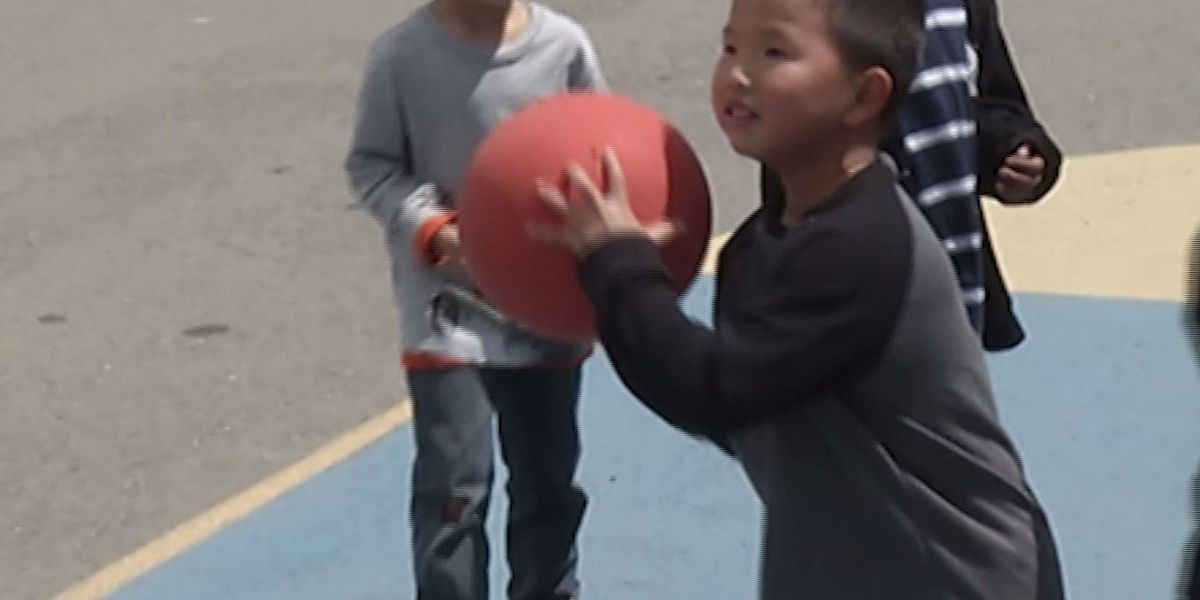Research finds children benefit from mixed-age play