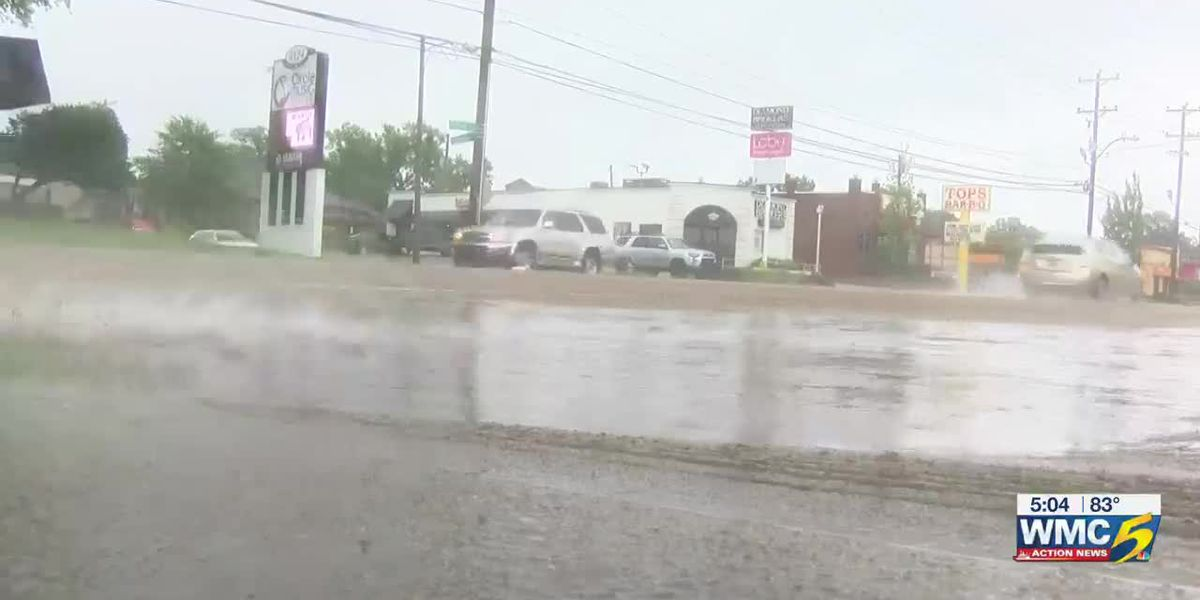 Shelby County avoids major flooding as remnants of Barry pass through the Mid-South